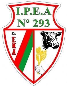 Logo I.P.E.A. N° 293
